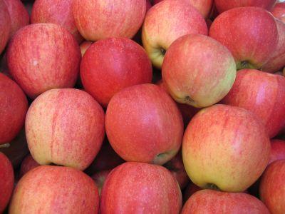 Semifreddo alle mele